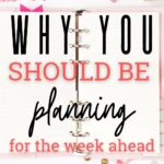 plan for the week ahead