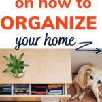 best organizing books